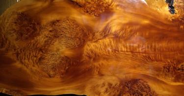 Totarol : The worla's New Natural Avtive