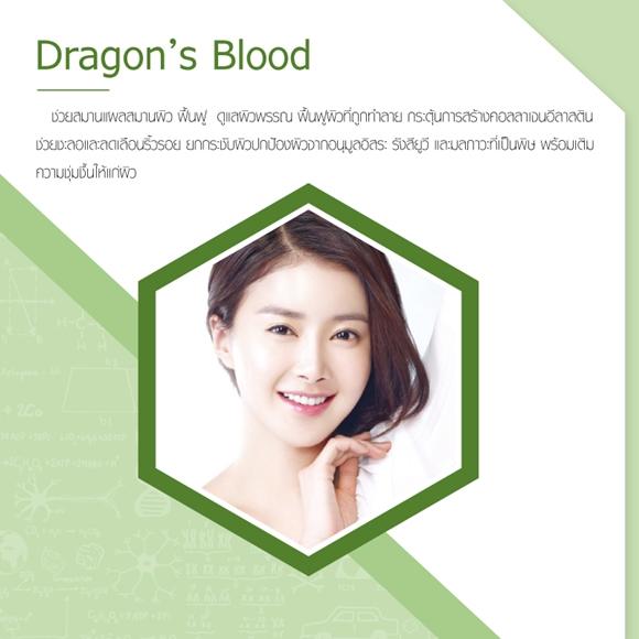 dragons blood ดีอย่างไร
