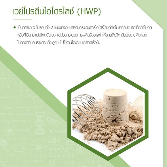 เวย์โปรตีนไฮโดรไลซ์ (HWP)