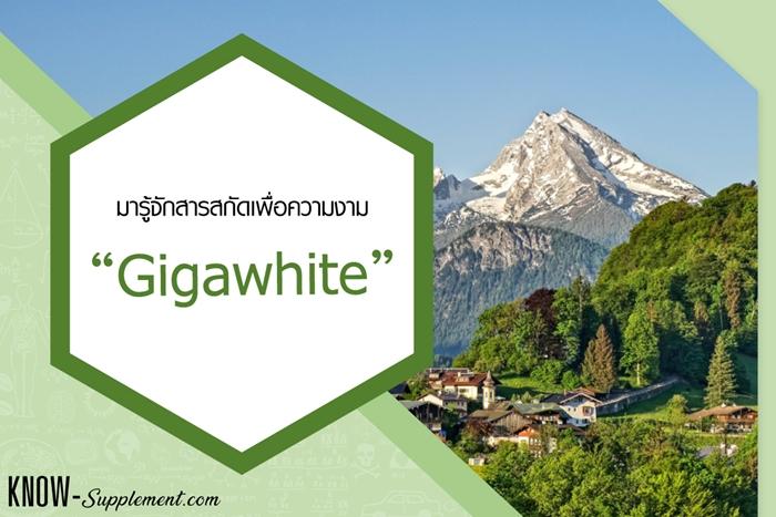 Gigawhite