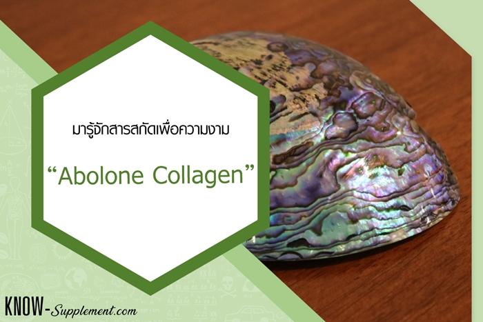 Abolone Collagen