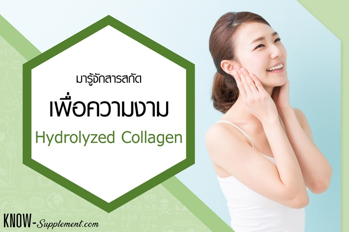 Hydrolyzed Collagenn คือ