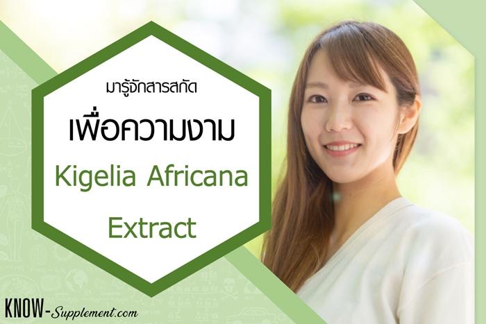 Kigelia Africana Extract คือ